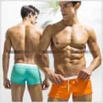 Spectrum Swimwear Trunk for Men